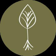 cropped-Enraizar_Logo_plain_color_transp-1.png